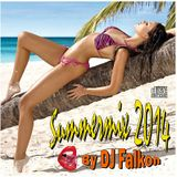 DJ Falkon SummerMix 2014