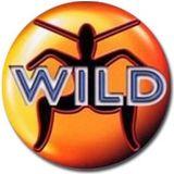 Danny P - Wild FM Classic's Mix