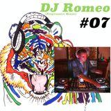 Viele bunte Farben Podcast #07 - Dj Romeo (Progressive House)