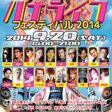 2014.9.20お台場ダイバーシティ ハナライフフェスMIXED BY DJ Tsuyoshi.