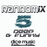 RandoMix 5 - David Ferrini (Deep & Funky)