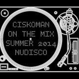 CISKOMAN ON THE MIX : SUMMER 2014 NUDISCO