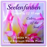 DJ XLarge - Seelenfarben (Vocal Bigroom House Mix 30mins)