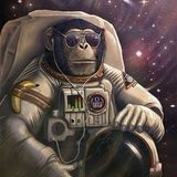 Primate in Space