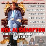 """""""Militarized Police, Michael Brown and Al Sharpton Rhetoric""""- Interview w/Former Black Panther Leade"""