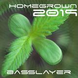 BassLayer's HomeGrown 2019 :: live at ShantiTickleFlux