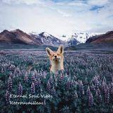 Eternal Soul Vibes - Retrouvailleas [Guest set for @dpstation.xyz]
