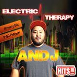 anDJ hits 101 radio set