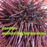 makarska(terasamix)