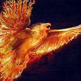 Rise Of Phoenix