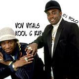 Villain Of Vinyl Vitals....Kool G. Rap (Kool Is Back)