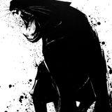 Random analog mix encounter 017 (The shadow of jaguar)
