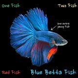 Blue Betta Fish (Jazzy Downtempo Mix)