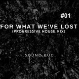 For What We've Lost  01 (PROGRESSIVE HOUSE SPECIAL)