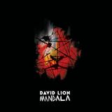DAVID LION -  MANDELA ALBUM MIX