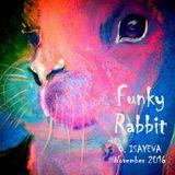 O. ISAYEVA - Funky Rabbit ( November 2016)
