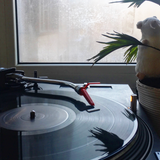 Home Vinyl Lessons