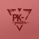 PK #14 – Julpanelen