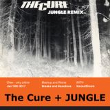 #dadstep1 :  The Cure + Jungle: And the crowd went bonkers...