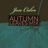 Autumn Leaves Mix