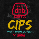 Arena dnb radio show - vibe fm - mixed by CIPS - September 16th 2014