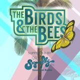 Adam Brandis Warm Up Mix at The Birds & The Bees in July 2016