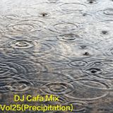 DJ Cafa Mix Vol.25(Precipitation)