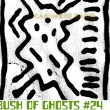 Bush of Ghosts #24 w/ David Tinning 21.04.2018