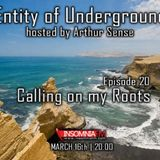 Arthur Sense - Entity of Underground #020: Calling on my Roots [March 2013] on Insomniafm.com