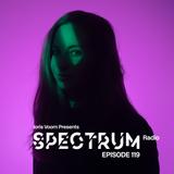 Joris Voorn Presents: Spectrum Radio 119