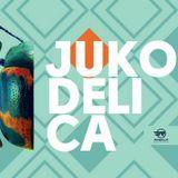 BREAKSAGE - Jukodelica preview mix