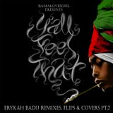BamaLoveSoul Presents Y'all Feel That?: Erykah Badu Remixes, Flips & Covers Pt2