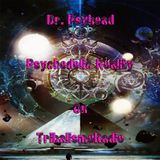 Dr. Psyhead Psychedelic Reality on TribalismoRadio March-16-2016