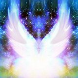 दिसंबर - heavenly - ✦✦ : : [live]
