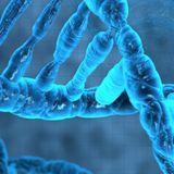 Biochemistry  L04