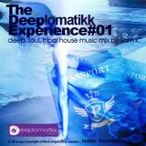 THE DEEPLOMATIKK EXPERIENCE MIXED BY SAM K