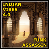 Funk Assassin - Indian Vibes 4.0