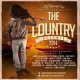 DJ Special Ed's 2014 Country Megamix