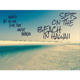 Sets On The Beach In Hawaii #2 [TheMusicNinja.Com]
