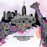Seven Lions - Electric Zoo 2017