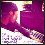 Sal - in the mix [Gold Digger] 2013.12.14