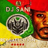 "DJ SANI (SON OF IRIE FM'S MIGHTY) MIKE RELEASE ""REGGAELUTION"""
