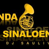 BANDA SINALOENSE MIX2014- DJSAULIVAN