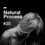 Natural Process #20
