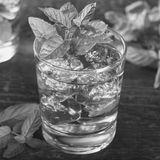 В баре — Выпуск 24 — Коктейль Мятный джулеп (Mint Julep)