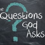 Summer Sermon Series: Questions God Asks