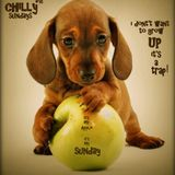 Chillysundays compilation #16 (Back To Yesterday)