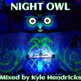 Night Owl - EDC Vegas 2013