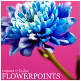 DJ KENTS - Flowerpoints EV 20140906