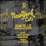 Juan Tellez - New York Cats - 3 May 2015